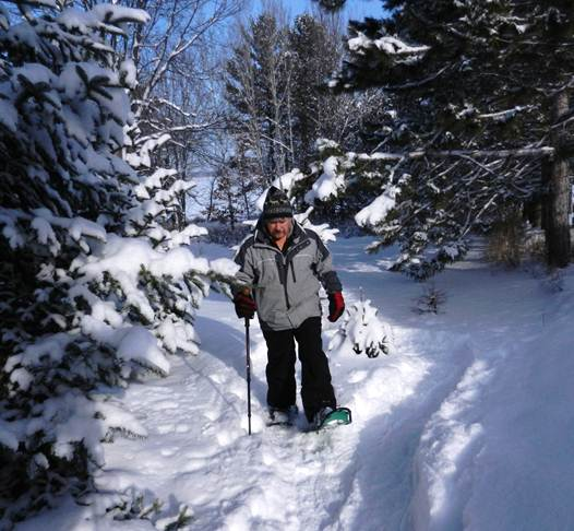 Snowshoeing with a single hiking staff