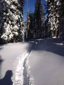 Lead or eat snow in this deep single track lane.
