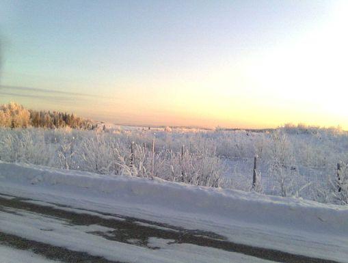 A lane in Winter