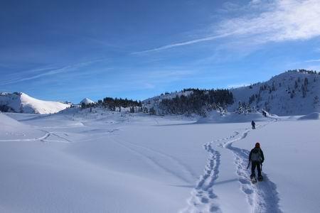 Crossing Rock Isle Lake - T. Koob