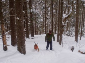Another snowshoe hiker and his dog head to the summit.