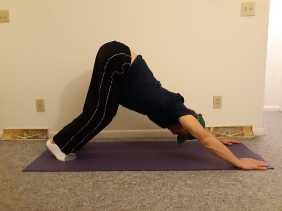 downward dog- back exercise