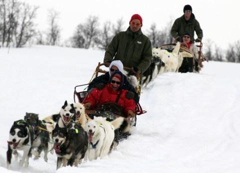 Dog sledding with Tove Sorensen's Alaskan huskies. Photo courtesy: Tromsø Villmarkssenter