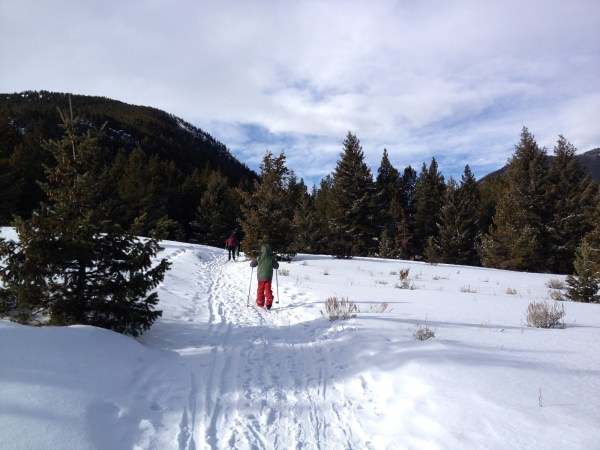 The Silver Run Ski Trails are fun for an easy snowshoe.