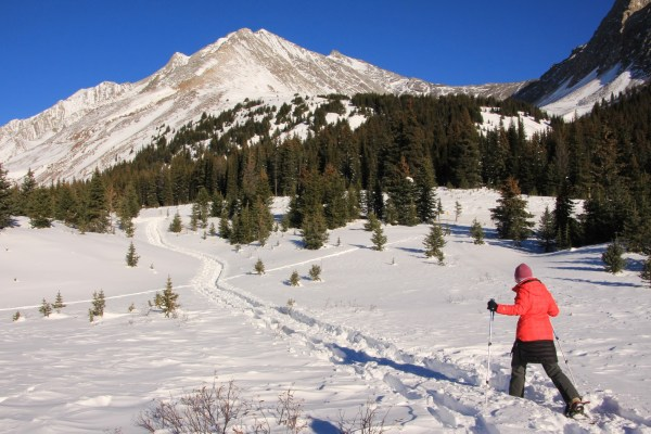November Snowshoeing at Highwood Pass