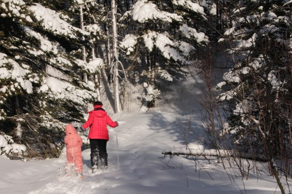 Pulling kids up hill with a ski pole