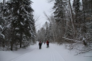Cross country skiing in Mauricie National Park