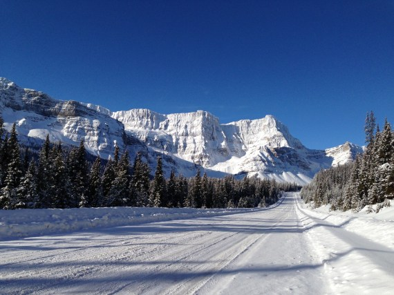 Driving North to Jasper National Park