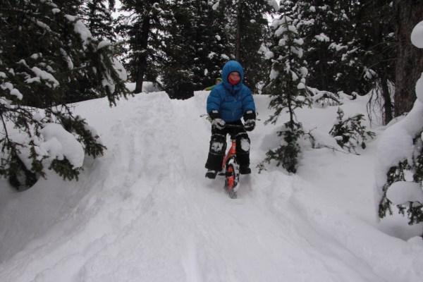 Strider Ski Bike