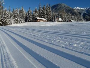 Fresh tracks at Nipika Mountain Resort.