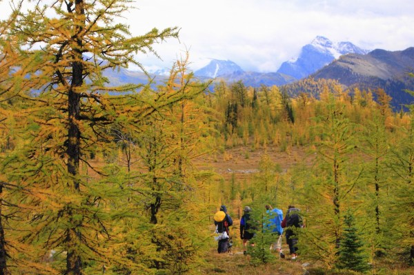 Fall hiking at Gibbon Pass