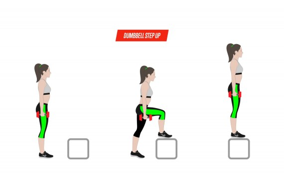 Step Up Exercise