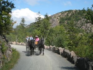 Enjoying Maine's scenery in a horse-drawn carriage, courtesy of friendsofacadia.org.