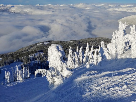 Revelstoke Mountain Resort scenery, British Columbia
