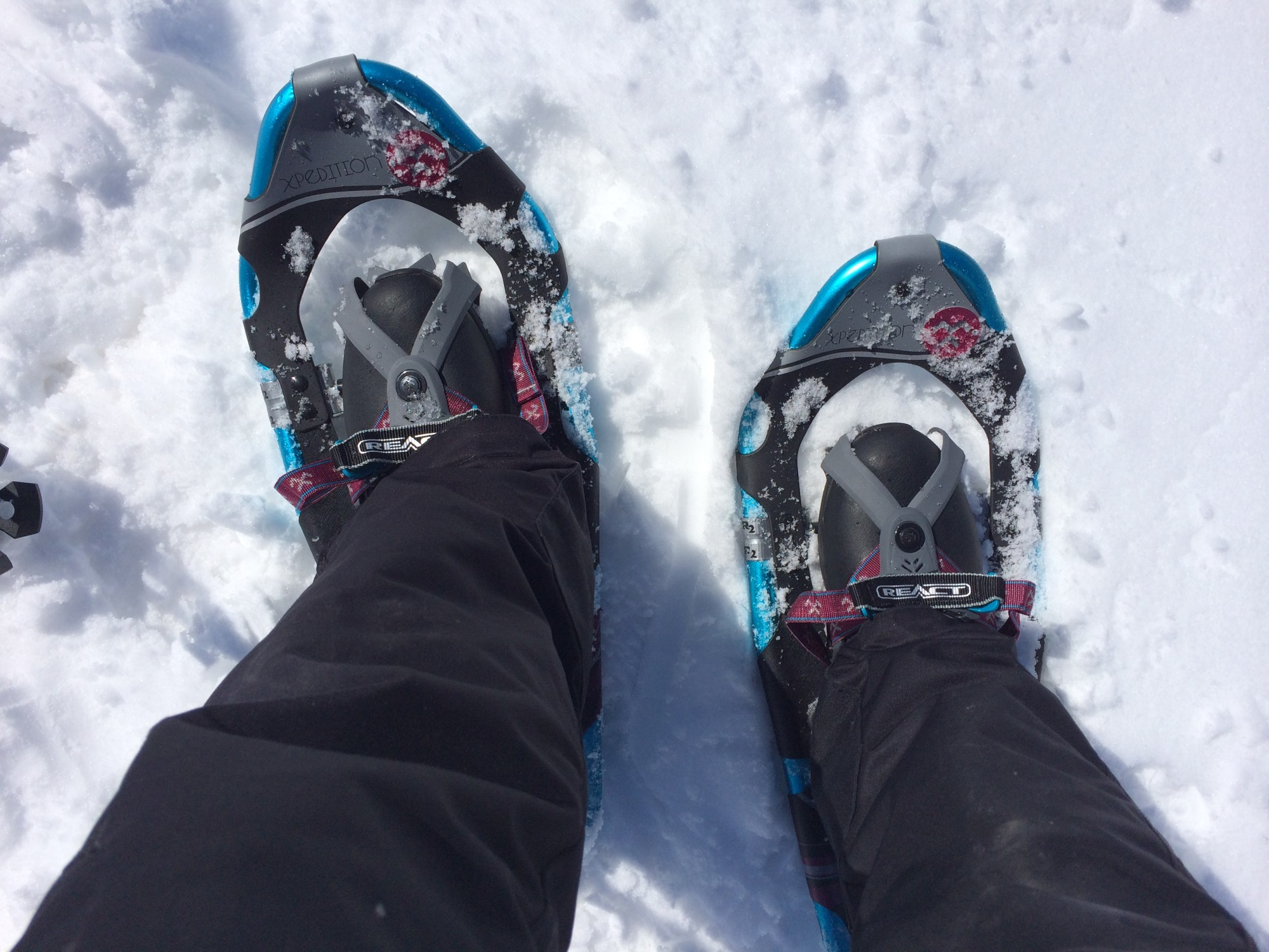 Real Snow Began After Dark >> Soaking And Snowshoeing At Strawberry Park Hot Springs Snowshoe