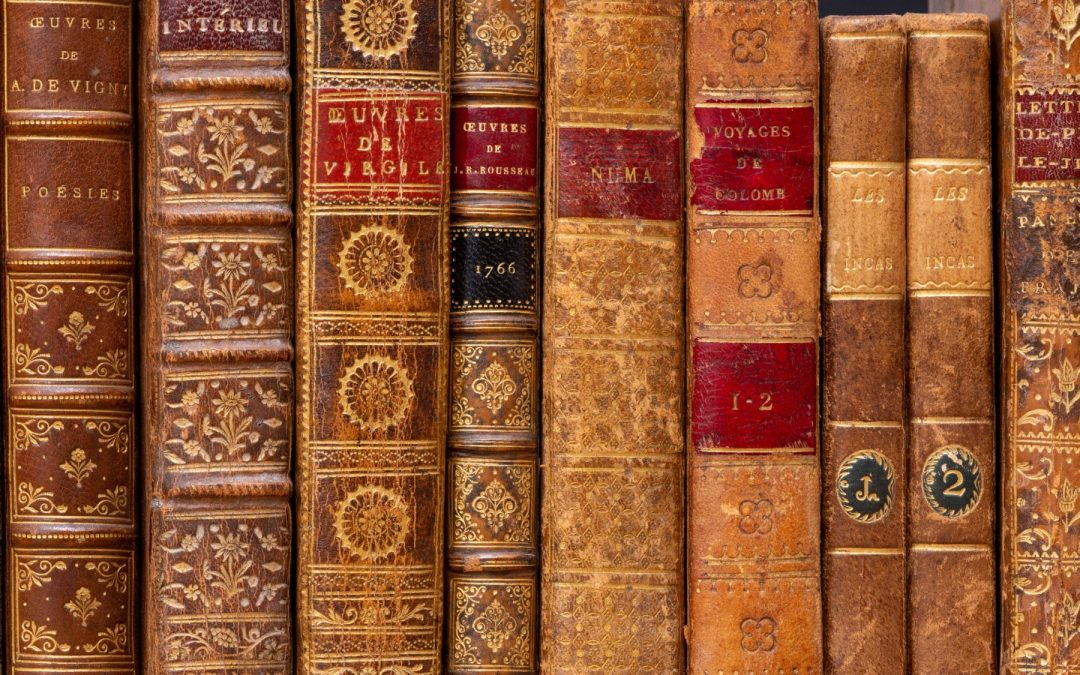 Literary Vs Genre Fiction: Why The Controversy?