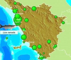Monitoraggio della presenza di sostanze perfluorurate nel biota (fauna ittica)