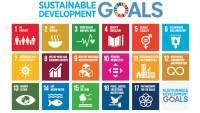 I conti ambientali, strumenti e modelli per le politiche integrate di sostenibilità