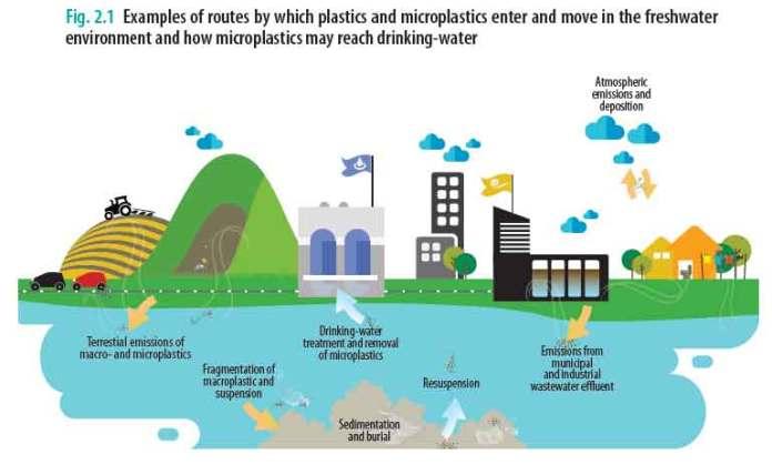 Esempi di come le microplastiche possono finire nell'acqua potabile