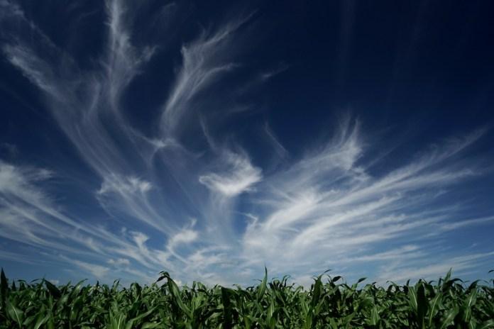 Un cielo di Cirri