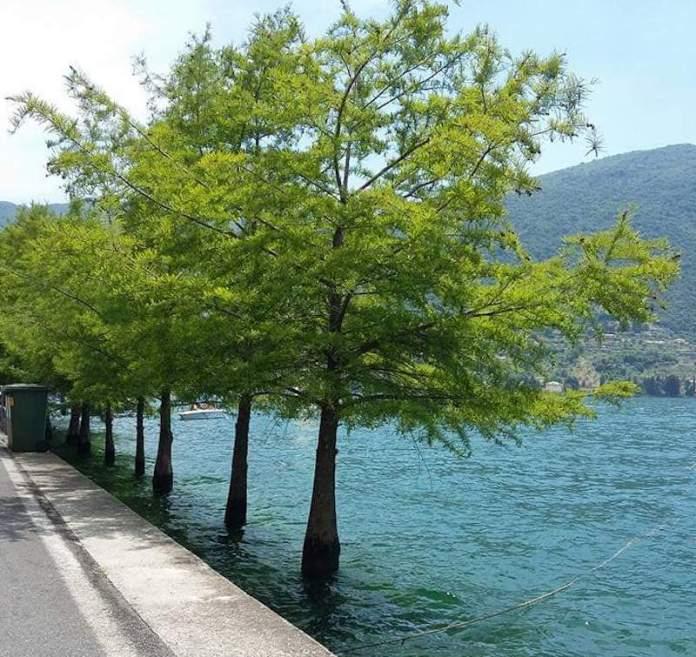 Lago di Iseo - Monte Isola