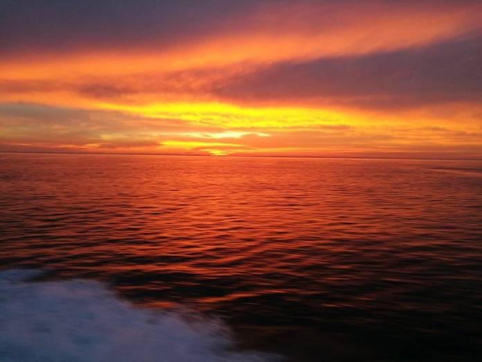 La Laguna: un meraviglioso Ecosistema