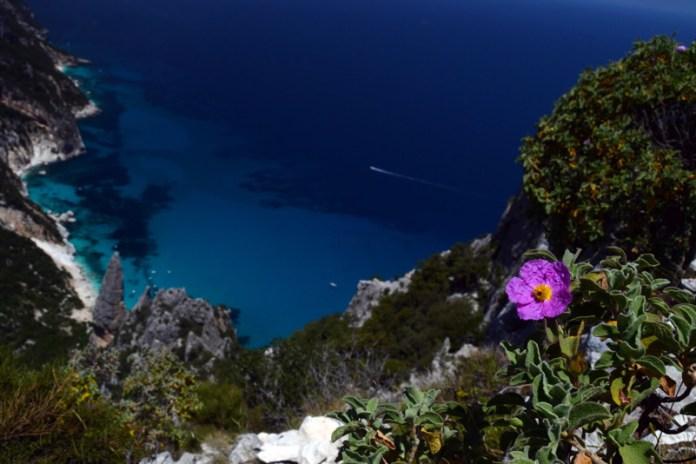 La guglia di Goloritze vista da Punta Salinas