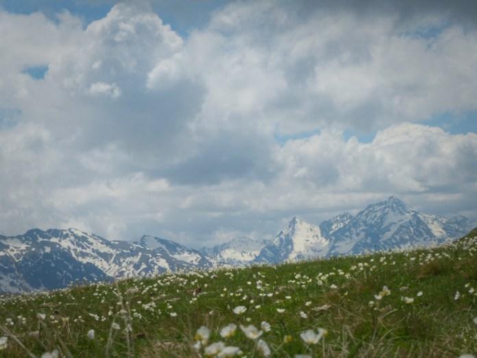 il bianco dei monti (Val Chisone)