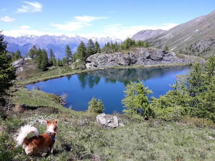 Lago Layet Saint Marcel