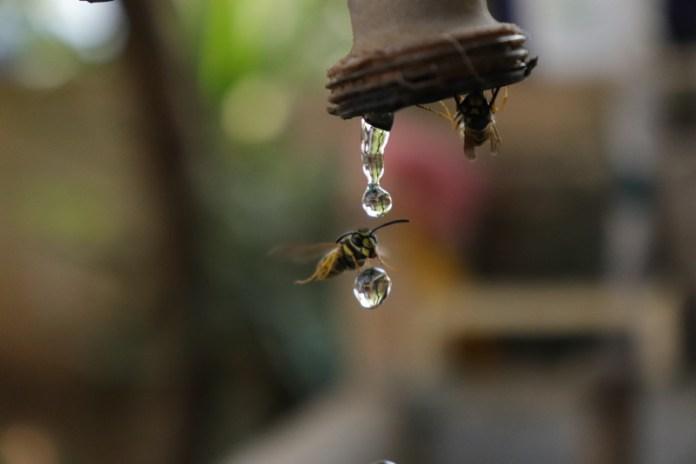 L' Acqua, bene prezioso, bene di tutti