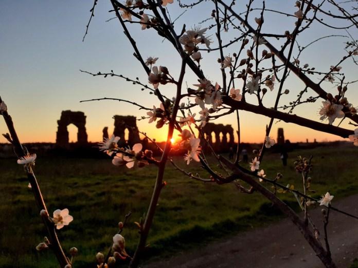 Parco degli acquedotti Roma