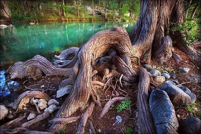 Roots of Spiritual Naturalism, Part 1: Introduction
