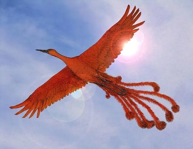 Focus on the Phoenix:  Establishing a Discipline of the Spirit