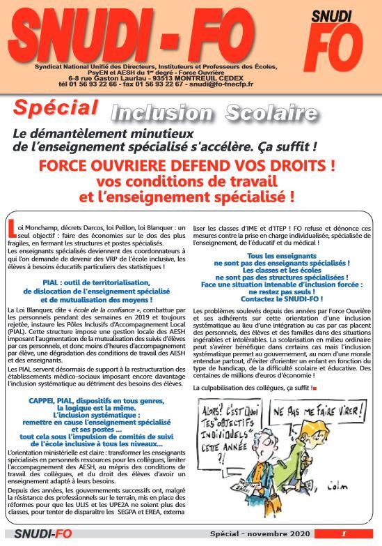 SPÉCIAL INCLUSION SCOLAIRE - 11/2020