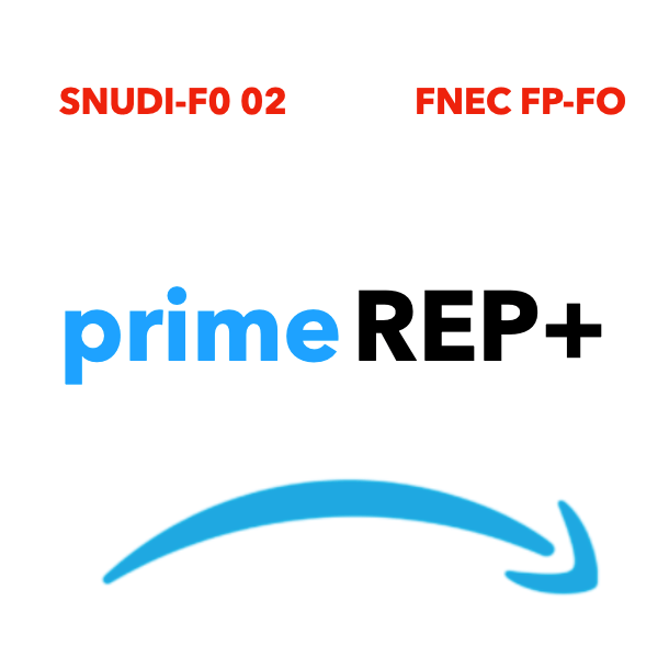 REP + : prime à géométrie variable