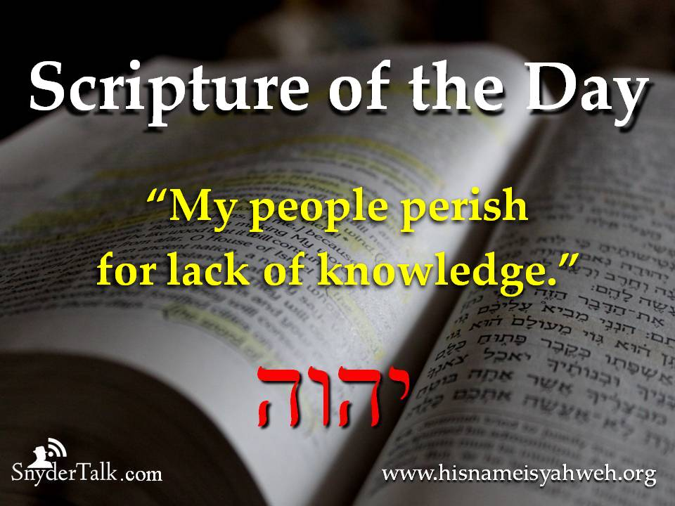 Image result for bible verse we perish for lack of knowledge