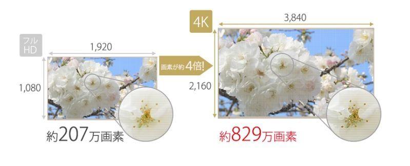 f:id:sora-no-color:20180515150931j:plain