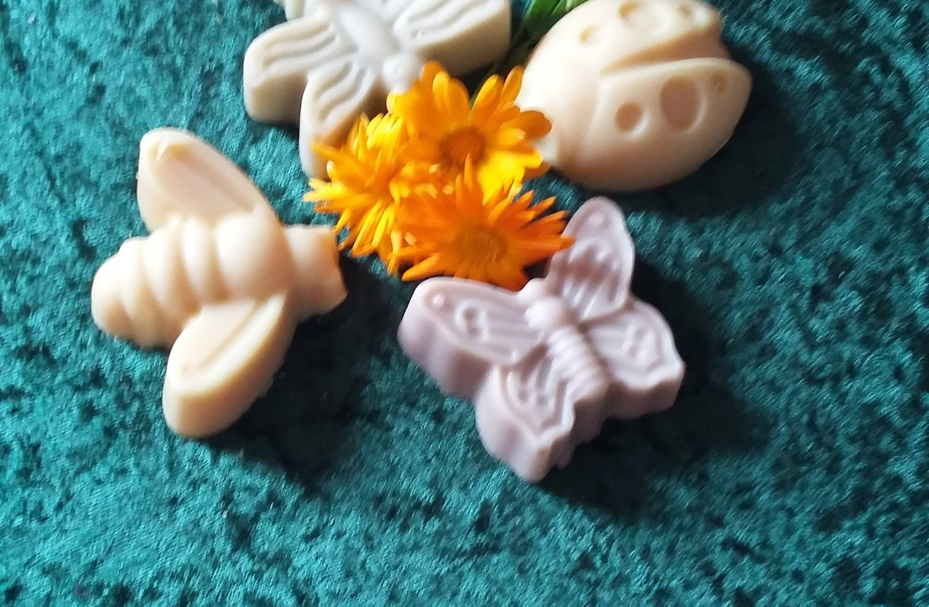 Novelty Insect Soaps