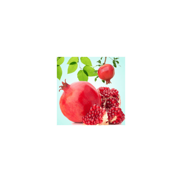 Pomegrante Fragrance Oil ( Size A - 1/4 ounce)