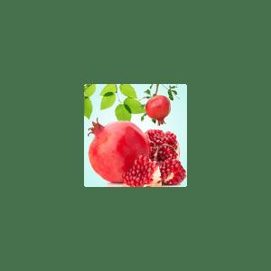 Pomegrante Fragrance Oil ( Size A - 1/4 ounce)