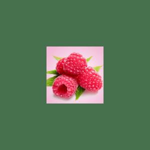 Raspberries Wilde Fragrance Oil ( Size A - 1/4 ounce)