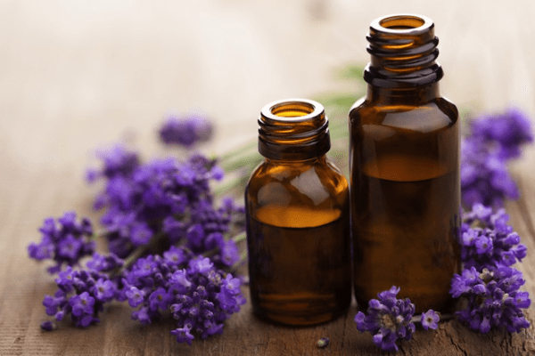 Shelly Lavender Essential Oil