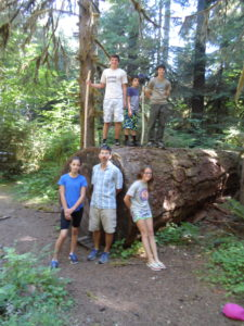 This tree was on a hiking loop around the campground. It's almost 6 feet in diameter.