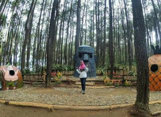 Hutan Pinus Asri: Lokasi Wisata Hits di Jogja Terbaru - Ada Bikini Bottom City