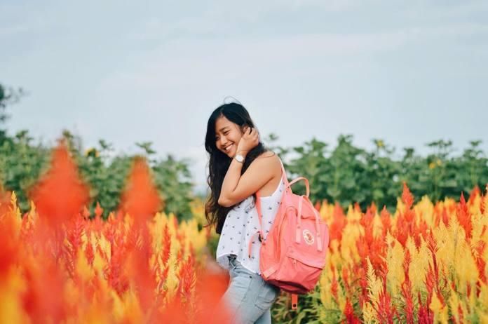 7 Travel Wisata Jogja Termurah dan Terpercaya untuk Anda