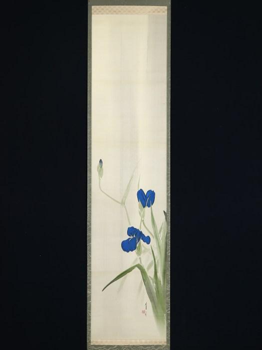 渡辺省亭 菖蒲図/Watanabe Seitei Iris