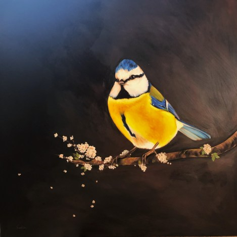 Sobia Shuaib Blameis Bird