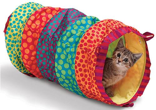 Tienda de mascotas-gatos