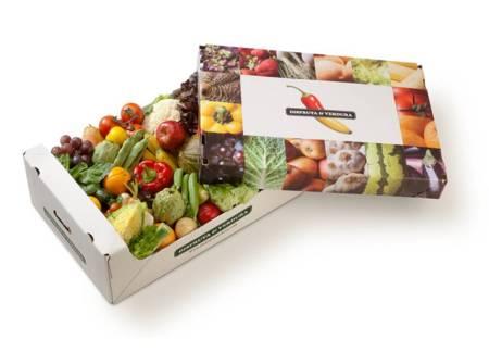 Disfruta y verdura huerto en casa