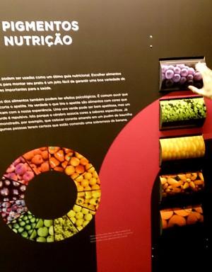 painel pigmentos alimentares exposicao a cor da luz